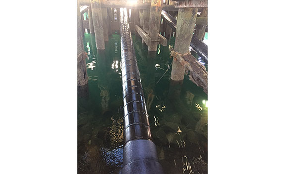 Pipes under the old pier protected with SeaShield™