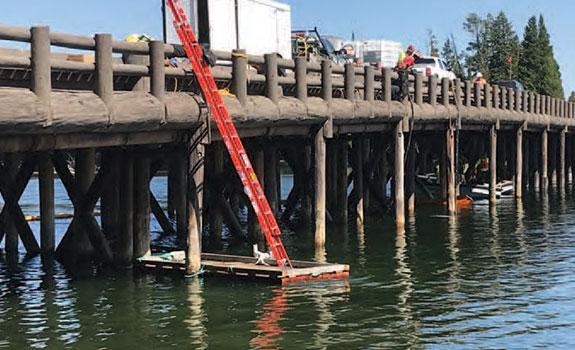 SeaShield Series 500 - Bridge timber piles